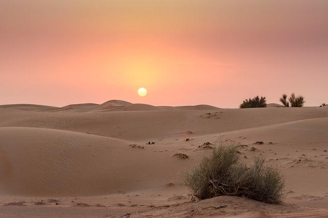 Faire un safari dans le désert de Dubaï