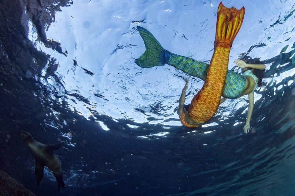 queue de sirène pour faire du mermaiding